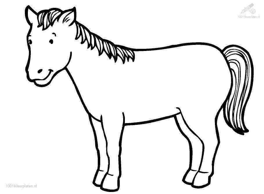 Carrousel Kleurplaat Manege Waarland Paarden